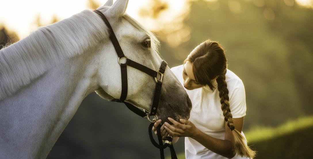 woman-kissing-a-horse-on-the-head-in-nature