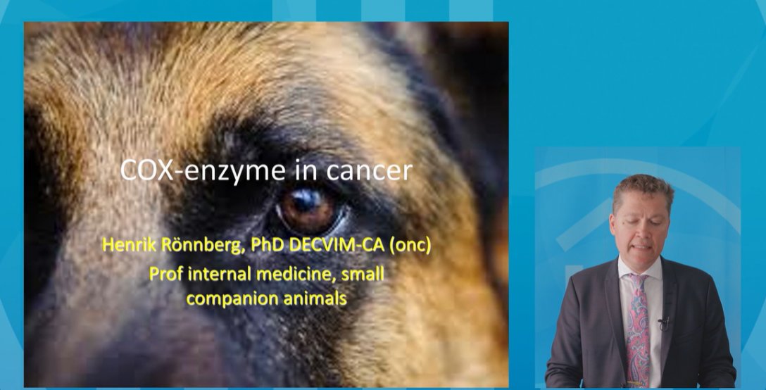 Henrik-ronnberg-cox-2-enzymes-in-cancer